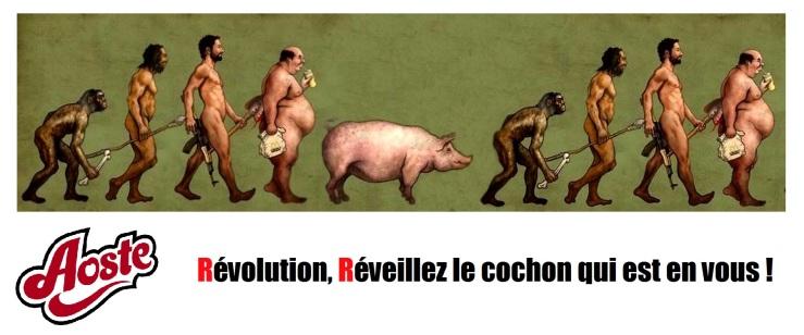 évolution (Magà ettori) Blog