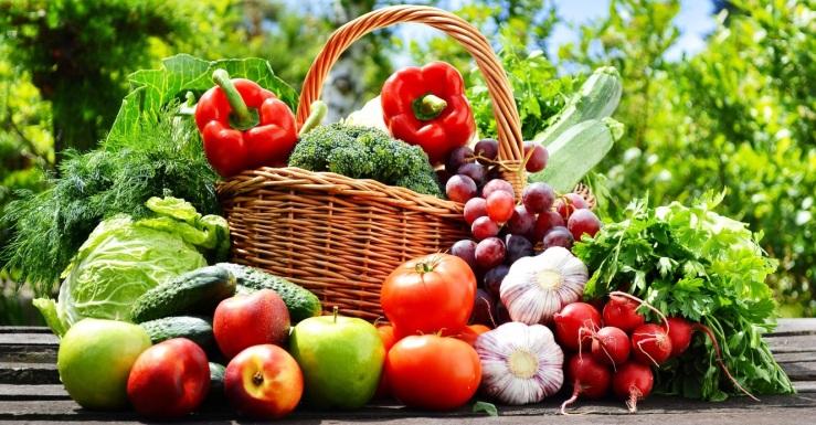 alimentation végétale - INSAVE