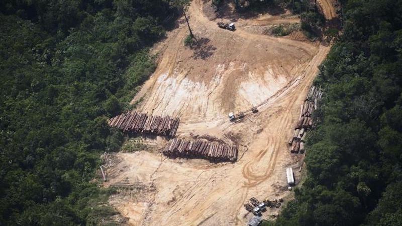 Amazonie 1